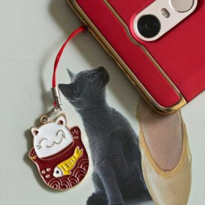 Chica Manga Mobile charm lucky cat maneki neko and fish